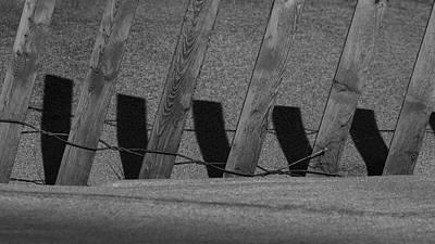 Photograph - Checks In The Dunes by Steve Gravano