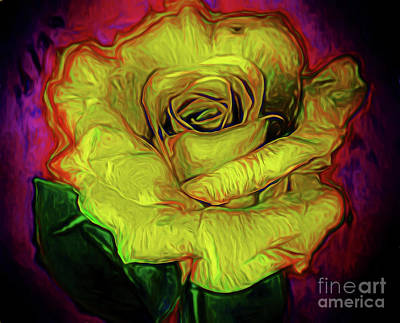 Photograph - Cheerful Rose 11218-1 by Ray Shrewsberry