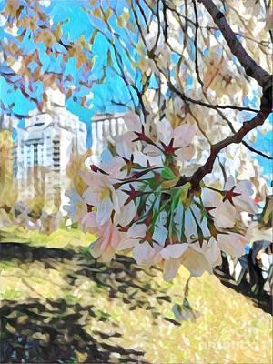 Photograph - Cheery Cherry Tree - Central Park In Spring by Miriam Danar