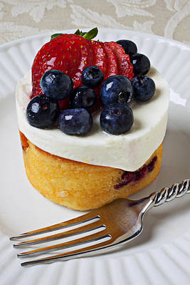 Cheese Cream Cake With Fruit Art Print by Garry Gay
