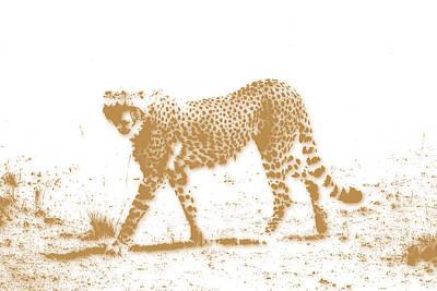 Cheetah 3 Art Print by Joe Hamilton