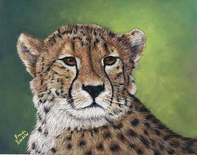 Pastel - Cheetah by Brenda Bonfield