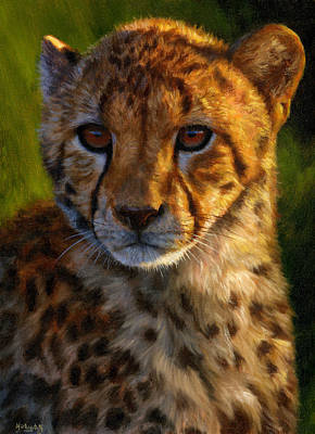 Painting - Cheetah Cub Painting - Print - Jason Morgan Wildlife Art by Jason Morgan