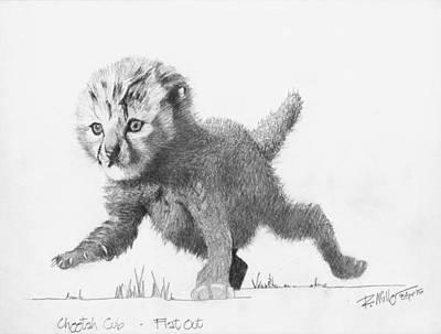 Cheetah Drawing - Cheetah Cub by Robert Miller