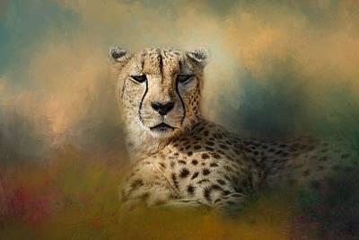 Photograph - Cheetah Enjoying A Summer Day by Jai Johnson
