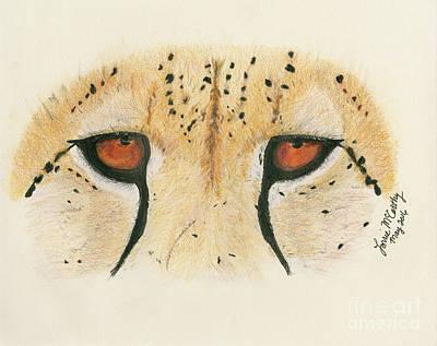 Cheetah Drawing - Cheetah Face by Lorrie McCarthy