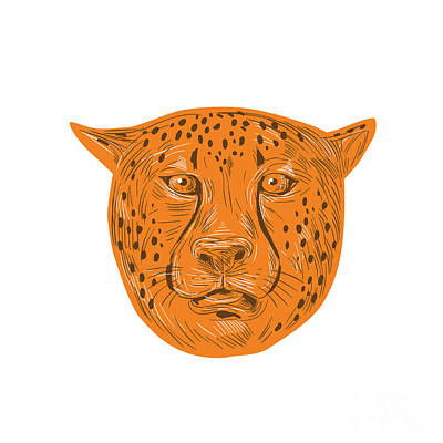 Cheetah Digital Art - Cheetah Head Drawing by Aloysius Patrimonio