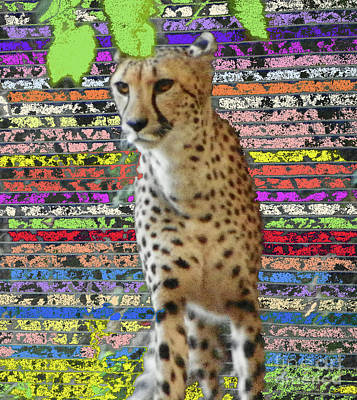 Photograph - Cheetah In Living Color by Shirley Moravec