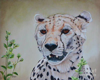 Painting - Cheetah by Jimmie Bartlett
