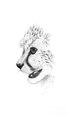 Cheetah Drawing - Cheetah by John Barnard