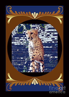 Photograph - Cheetah Lean And Mean by Shirley Moravec