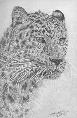 Cheetah Drawing - Cheetah by Manuel Diaz