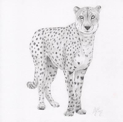 Cheetah Drawing - Cheetah by Nancy Ferry