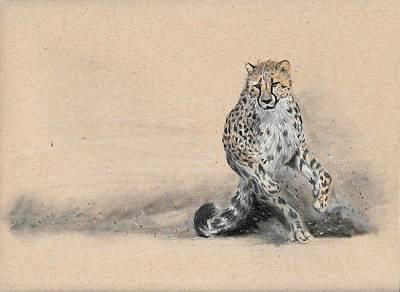 Cheetah Drawing - Cheetah On The Run by Alyson Weiss
