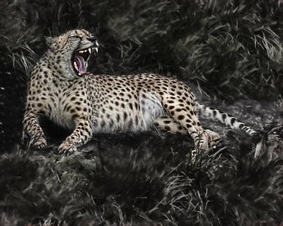 Cheetah Digital Art - Cheetah Resting by Rebecca Snyder