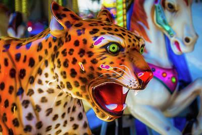 Cheetah Photograph - Cheetah Ride by Garry Gay