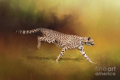 Digital Art - Cheetah Running by Sharon McConnell