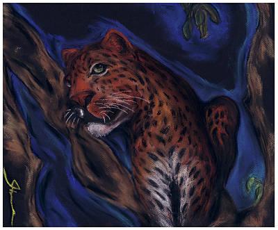 Cheetah Drawing - Cheetah by Shane Zinter