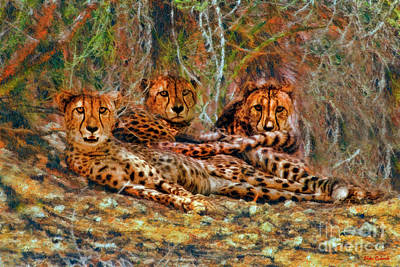 Photograph - Cheetahs Den by Blake Richards