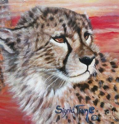 Painting - Blaa Kattproduksjoner       Cheetahs Face by Sigrid Tune
