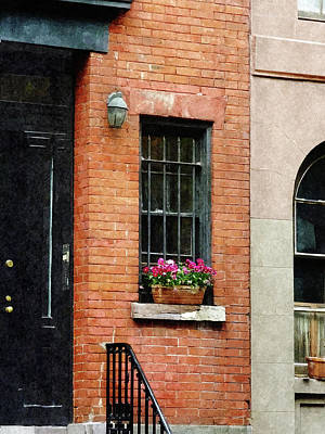 New York New York Photograph - Chelsea Windowbox by Susan Savad