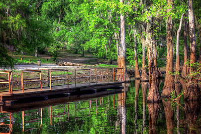 Photograph - Cheniere Lake Bayou Dock by Ester Rogers