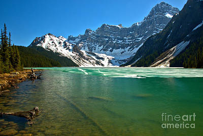 Photograph - Chephren Lake Shoreline by Adam Jewell