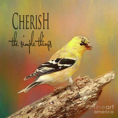 Art Print featuring the photograph Cherish by Darren Fisher