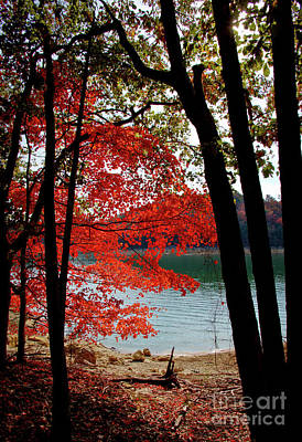 Photograph - Cherokee Lake Color by Douglas Stucky