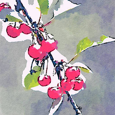 Photograph - Cherries 3 by Ronda Broatch