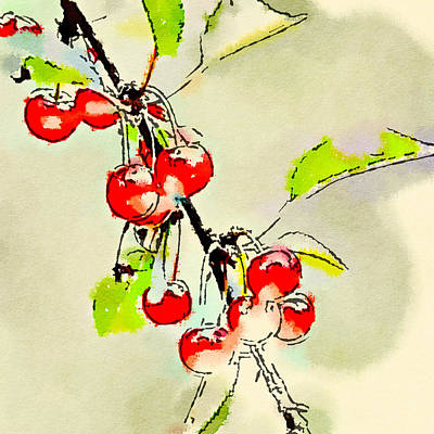 Photograph - Cherries 4 by Ronda Broatch