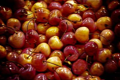 Photograph - Cherries by Bill Howard