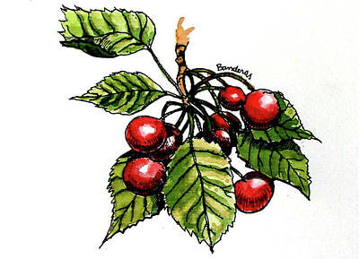 Painting - Cherries by Terry Banderas