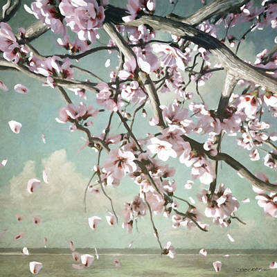 Digital Art - Cherry Blossom by Cynthia Decker