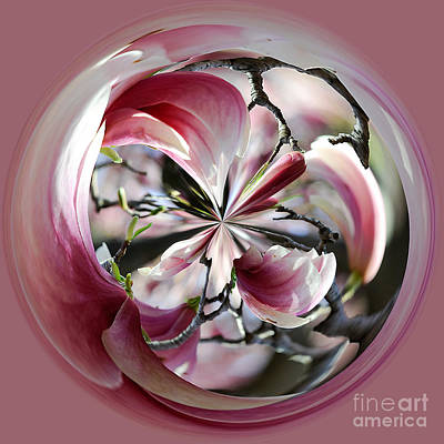 Photograph - Cherry Blossom Globe 073a_1104 by Donna Sizemore
