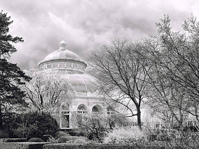 Photograph - Cherry Blossom Monochrome by Jessica Jenney