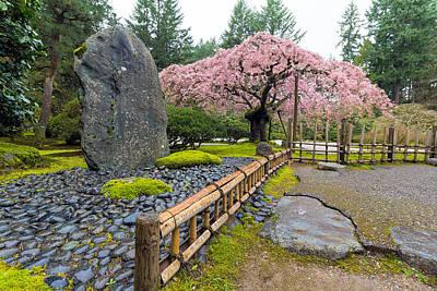 Cherry Blossom Tree By Natural Rock Art Print by Jit Lim