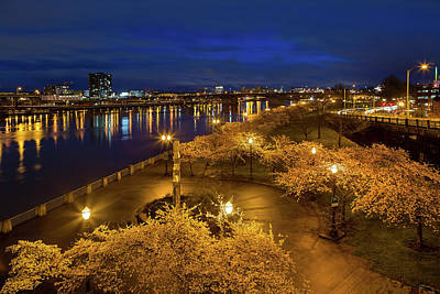 Nature Photograph - Cherry Blossom Trees At Portland Waterfront Park During Blue Hou by David Gn