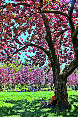 Photograph - Cherry Blossom Trees Of B B G # 9 - Photopainting by Allen Beatty