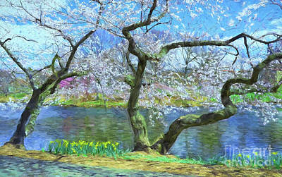 Photograph - Cherry Blossom Trees Of Branch Brook Park 10 by Allen Beatty