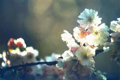 Digital Art - Cherry Blossom Zen by Patrick Turner