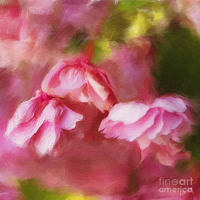 Linda King Digital Art - Cherry Blossoms 3571 by Linda King