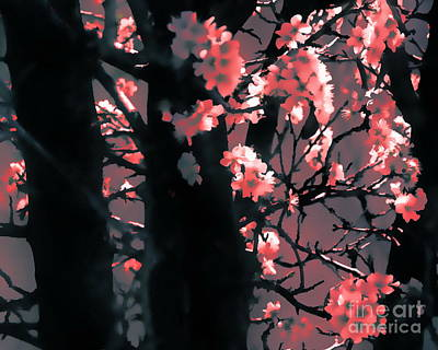 Digital Art - Cherry Blossoms In The Back by Tim Richards