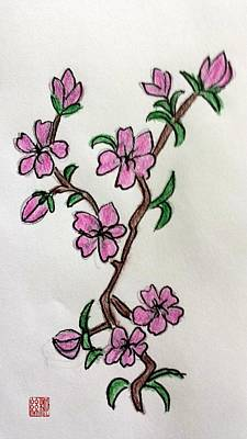 Painting - Cherry Blossoms by Margaret Welsh Willowsilk
