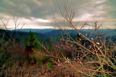 Smokey Mountain Drive Photograph - Cherry Blossoms On Sky Line Drive by Melissa Hicks