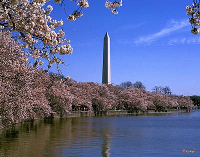Art Print featuring the photograph Cherry Blossoms On The Tidal Basin 15j by Gerry Gantt