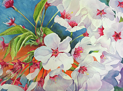 Cherry Blossomsa Art Print