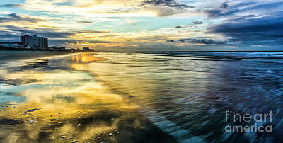Cherry Grove Golden Shimmer Art Print