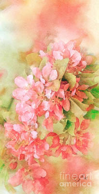 Cherry Blossoms Painting - Cherry by Mo T