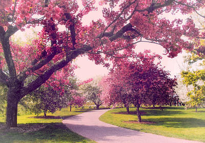 Photograph - Cherry Orchard Charm by Jessica Jenney